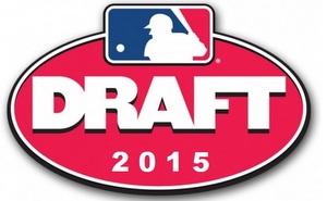 2015 Draft logo